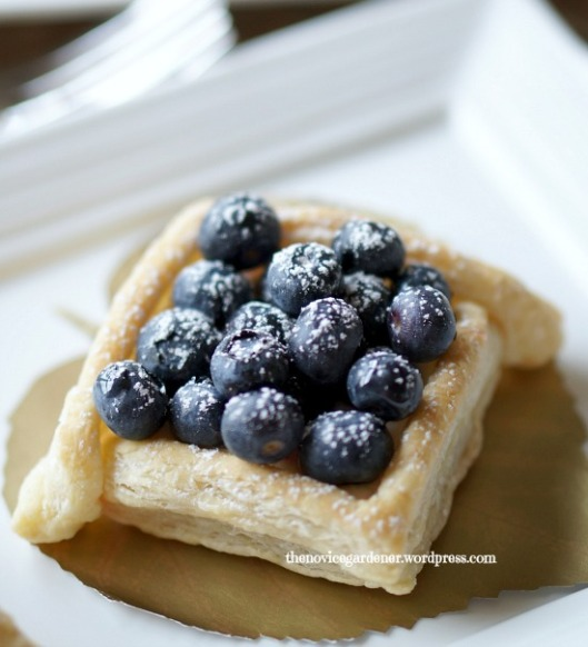 square blueberry tart TNG